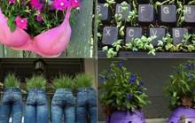 Những ý tưởng gieo trồng bá đạo nhất quả đất