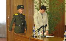 Sinh viên Mỹ bị bắt vì trộm biểu ngữ ở Triều Tiên