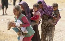 Thu thập chứng cứ phạm tội của IS từ những phụ nữ vừa trốn thoát