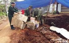 Đắk Lắk: Phát hiện 80 quả đạn pháo trên đường phố