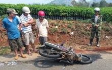 Xe máy và ô tô tông nhau, hai người thương vong