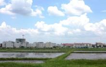 Đổi mới quy định về tách thửa đất tại TP HCM