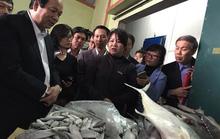 Xử lý hải sản tồn đọng trước Tết