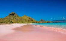 Độc đáo những bãi biển hồng