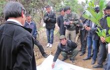 Phó Chủ tịch TP Đà Nẵng bắt quả tang dân phá rừng trồng cây