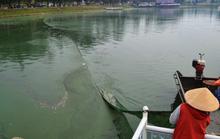 Tảo lam đặc quánh, hồ Xuân Hương bốc mùi hôi