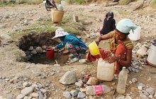 Kiệt quệ vì thiếu nước