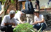 Fan dâng hoa, nhớ ngày mất Trịnh Công Sơn