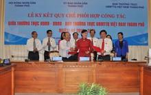 TP HCM: Kiên trì đổi mới hoạt động giám sát