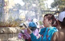 Cận cảnh ngày rằm ở chùa Châu Thới