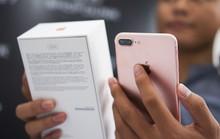 iPhone 7 loạn giá tại Việt Nam