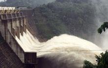 3 thủy điện ở Quảng Nam xả lũ, dân cuống cuồng lùa trâu bò lên núi