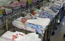 TP HCM: Cứ 100 ca sinh có 43 ca phá thai!