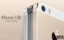 iPhone 5se dùng chip A9 và M9 như iPhone 6s?
