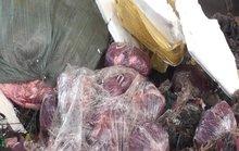 1,6 tấn nội tạng giấu trên xe khách biển số Lào
