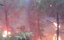 Chữa cháy rừng, bí thư xã gãy tay, cán bộ địa chính ngất xỉu