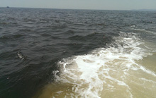 Phát hiện vệt nước có màu lạ trên biển ở Hà Tĩnh