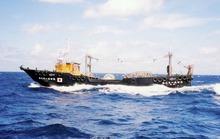 Tàu cá Trung Quốc lấn át tàu Nhật trên biển Hoa Đông