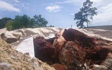Bao bì chất thải chôn ở Đà Nẵng có ghi chữ Formosa