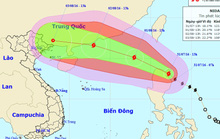 Cảnh báo khả năng bão Nida giật cấp 15-16 đổ bộ vào Bắc Bộ