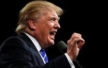 Sự non nớt đằng sau cơn bão Twitter của ông Trump