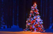 Trang trí nhà đón Noel, một người rơi xuống đất tử vong