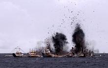 """Châu Á sôi sục """"cuộc chiến cá"""""""