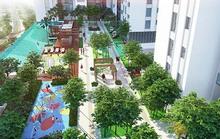 An cư xanh tại khu phức hợp cao cấp trung tâm TP HCM từ 960 triệu đồng