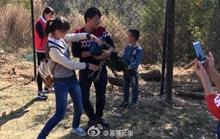 Bị du khách Trung Quốc bắt chụp hình, 2 con công sốc tới chết