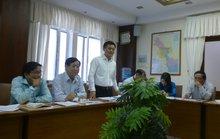 TP HCM: Bảo dưỡng 16 cây xanh trên đường Tôn Đức Thắng