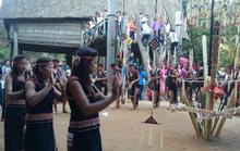 Ngày Tết, khách Tây thích thú với trò chơi dân gian Việt