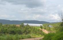 Đất dự án bỏ trống, dân lấn chiếm canh tác