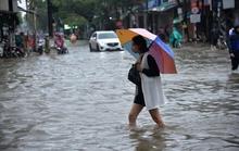 Quảng Ngãi đảo lộn vì mưa lớn, nước dâng cao ngập nặng