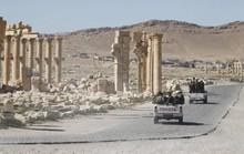 IS tái chiếm TP Palmyra