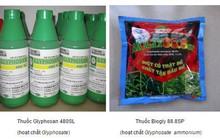 Chất glyphosate an toàn nếu sử dụng đúng cách