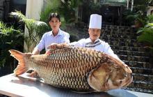 Cá hô 119 kg từ Campuchia về nhà hàng ở TPHCM
