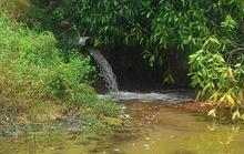 Doanh nghiệp xả thẳng nước thải ra môi trường