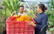 TP HCM bảo tồn được hơn 380 giống hoa lan quý hiếm