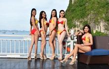 Vietjet đồng hành cùng cuộc thi Hoa hậu Việt Nam 2016