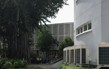 Nam thanh niên nghi nhảy lầu tự tử ở Trường ĐH Y Dược TP