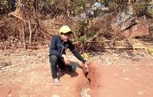 Mặt đất xuất hiện vết nứt bất thường, dân Gia Lai hoang mang