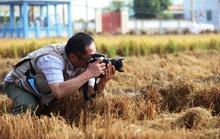 Nhà báo Nhật thị sát hạn mặn ở ĐBSCL