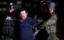 Chán nhà tù Mexico, trùm ma túy muốn nhanh được dẫn độ sang Mỹ