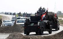 Lực lượng Iraq tiến vào Fallujah