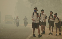"""Khói mù Indonesia """"giết hơn 100.000 người"""""""
