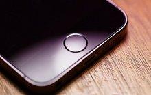 iPhone 4 inch giá 400 USD