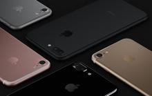 iPhone 7, chống nước, bỏ cổng tai nghe, 2 camera ...