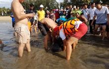 Nỗ lực giải cứu cá heo dạt bờ biển Quy Nhơn