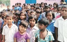 23 học sinh mất mạng vì cơm trộn thuốc trừ sâu, hiệu trưởng lãnh án