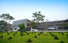FPT - Doanh thu từ thị trường nước ngoài tăng 36%